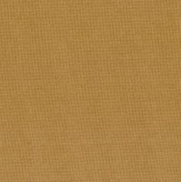 "108"" Kansas Troubles Traditional Wide Backing, Tan"