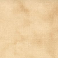 "108"" Primitive Muslin by Moda, Wide Quilt Back, Pie Crust"